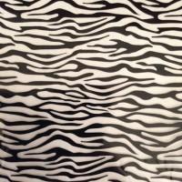 petit zebra